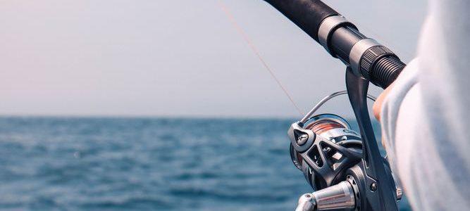 Kom ud på fisketure i Øresund her